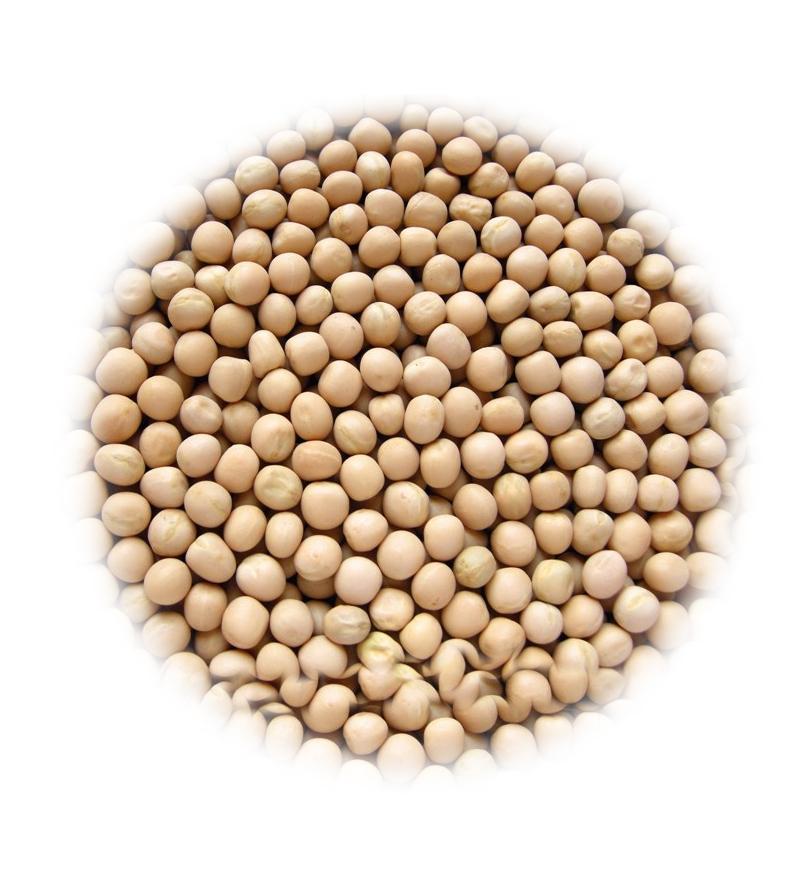Yellow-Peas-(Sabut-Matar)